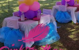 Questions to Pink Feather Events Owner Pamela Rennie-Kalidas